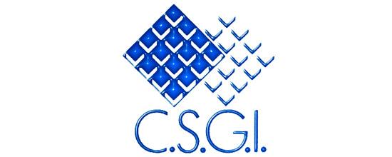 C.S.G.I.